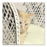 Yellow Tabby Cat Square Car Magnet 3