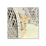 Yellow Tabby Cat Square Sticker 3