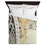 Yellow Tabby Cat Queen Duvet