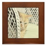 Yellow Tabby Cat Framed Tile