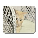 Yellow Tabby Cat Mousepad