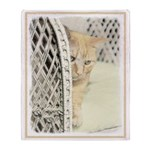 Yellow Tabby Cat Throw Blanket