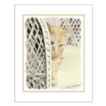 Yellow Tabby Cat Small Poster