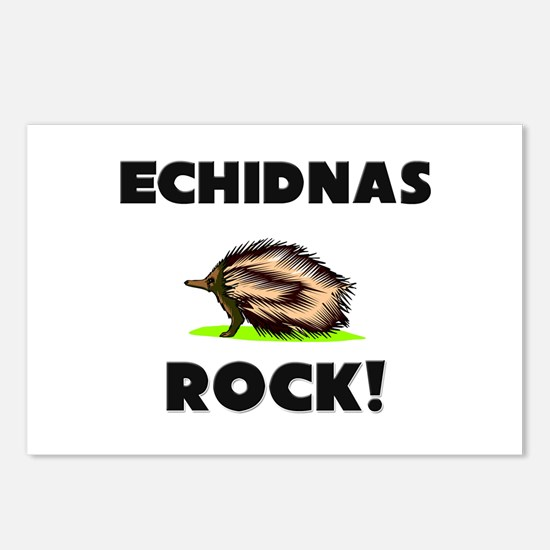 Echidnas Rock! Postcards (Package of 8)