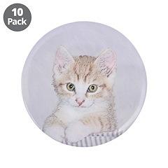 Yellow Tabby Kitten 3.5