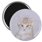 Yellow Tabby Kitten Magnet