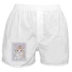 Yellow Tabby Kitten Boxer Shorts