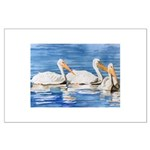 White Pelicans Large Poster