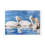 White Pelicans Mini Poster Print