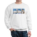 White Pelicans Sweatshirt