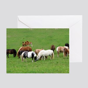 Mini Horses in Pasture Greeting Cards (Package of
