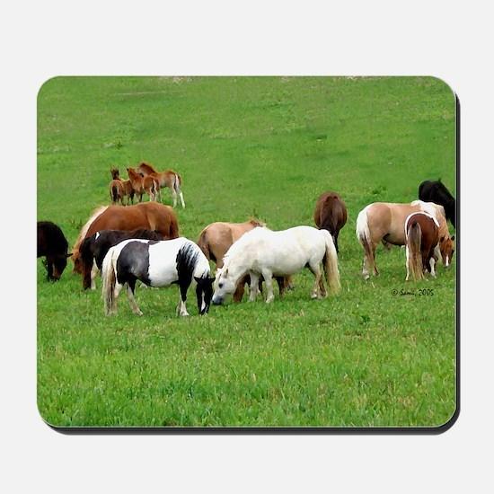 Mini Horses in Pasture Mousepad