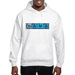 Obama Elements Hooded Sweatshirt