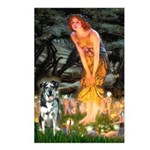 MidEve - Catahoula Leopard Postcards (Package of 8