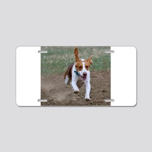 Flying Beagle Hank Aluminum License Plate