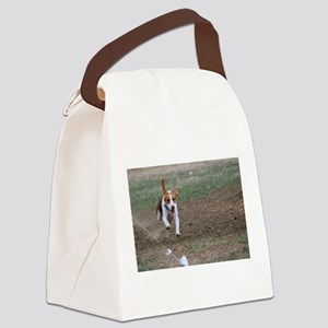 Beagle flying Canvas Lunch Bag