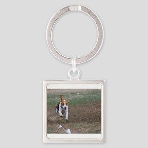 Beagle flying Keychains