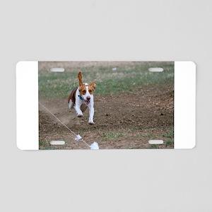 Beagle flying Aluminum License Plate