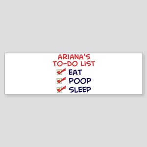 Ariana's To-Do List Bumper Sticker
