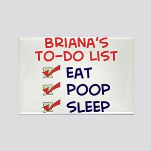 Briana's To-Do List Rectangle Magnet