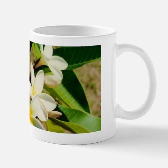 Frangipani/Plumeria Flowers Mug