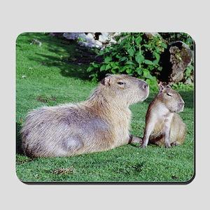 Capybara Mom and Son Mousepad