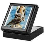 Brown Pelicans Keepsake Box
