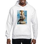 Brown Pelicans Hooded Sweatshirt