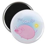 Funny Cartoon Flying Pig Magnet - Inspirational!