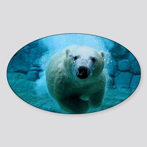 Polar Bear Sticker
