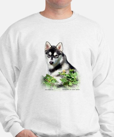 Siberian Husky Dog Jumper