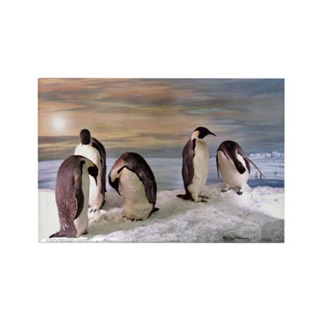 Penguins from Antarctica Rectangle Magnet