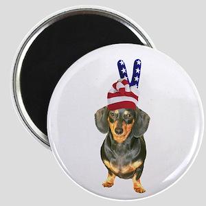 USA Hat Magnet