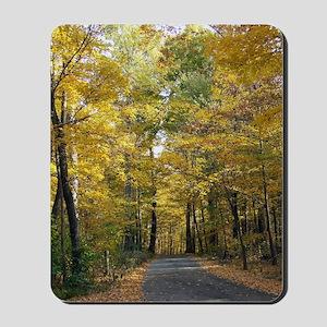 Hueston Woods State Park Mousepad