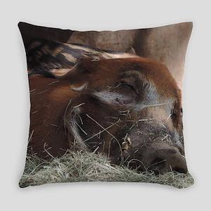 Sleeping Wild Boar Everyday Pillow