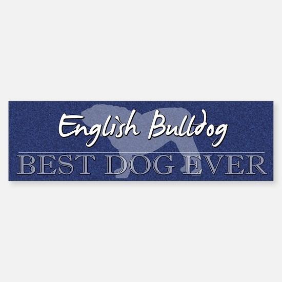 Best Dog Ever English Bulldog Bumper Bumper Bumper Sticker