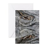 Crocodile Eyes Greeting Cards (Pk of 20)
