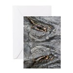 Crocodile Eyes Greeting Card