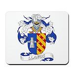 Llanos Family Crest Mousepad