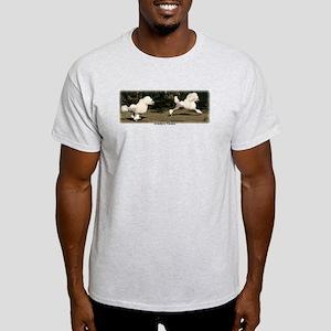 Standard Poodle Light T-Shirt