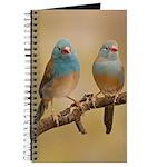 Blue Cap Cordon Journal