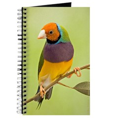 Gouldian in a Gum Tree Journal (YH)