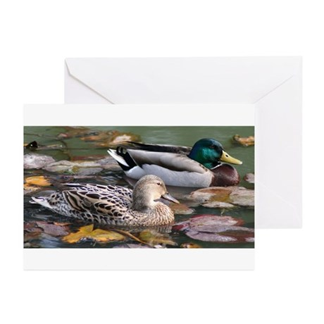 Mallard Couple Greeting Cards (Pk of 10)
