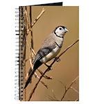 Wild Owl Finch Journal