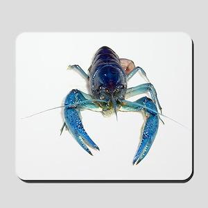 Blue Crayfish Mousepad