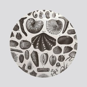 biology science illustration seashe Round Ornament