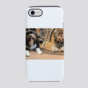 Konner and Kona dogs friends iPhone 8/7 Tough Case