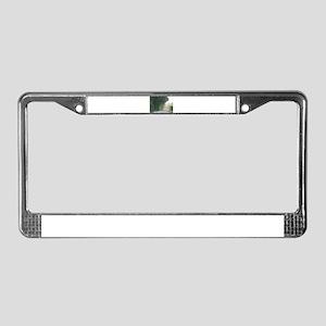 LIGHTSMITH License Plate Frame