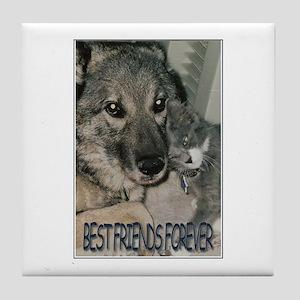 """Best Friends Forever"" Tile Coaster"
