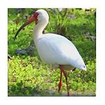 White Ibis Tile Coaster